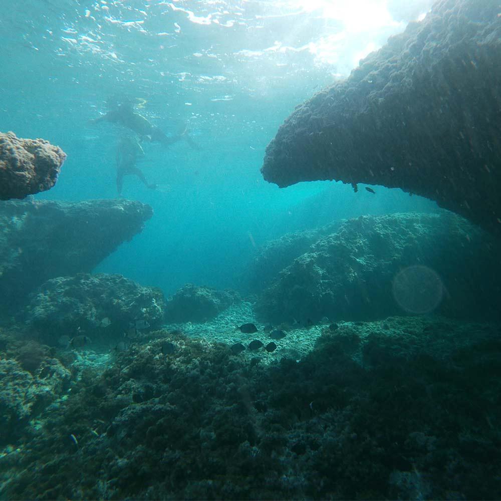 haciendo snorkel en cabo de gata con fondos rocosos