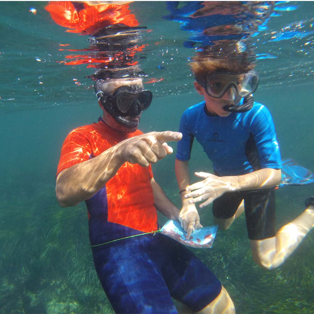 busqueda-del-tesoro-submarina-en-cabo-de-gata