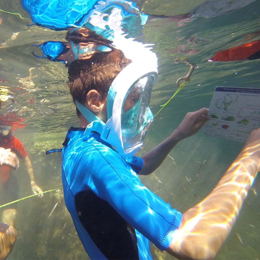 snorkel-busqueda-del-tesoro